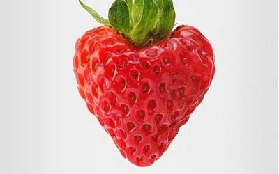 Die rote Erdbeere